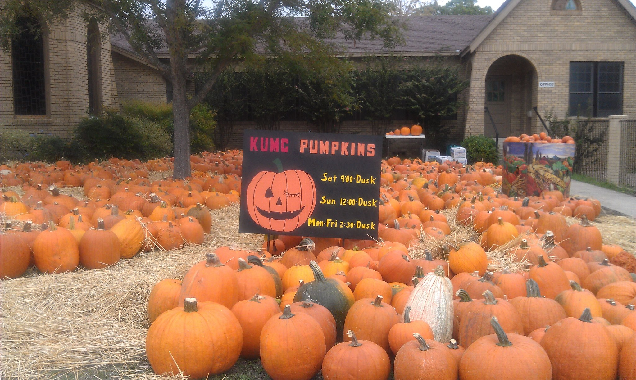 Pumpkin Patches, Haunted Houses and More Halloween Fun Around ...