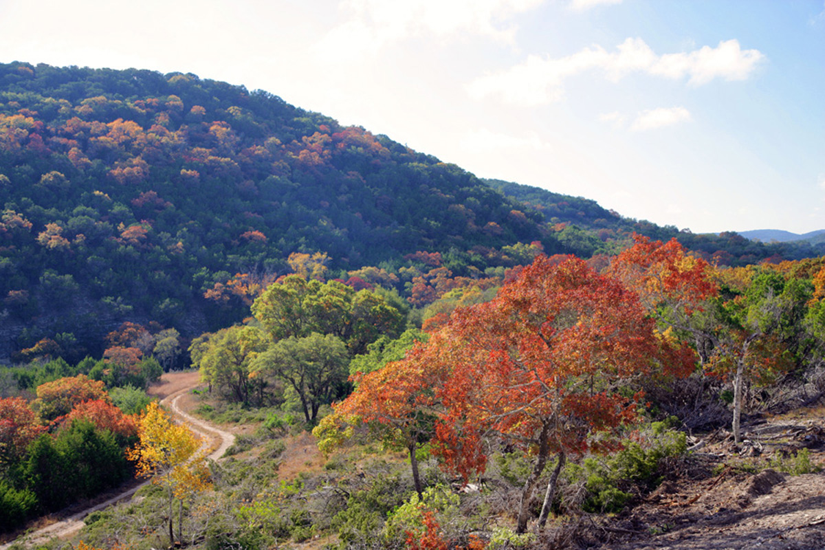 The best places in central texas to see fall foliage go 20